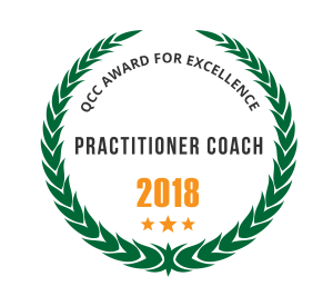 Professional Coach Audit